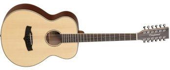 Tanglewood TW12 (12 String Guitar)